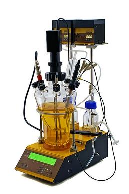 Bioréacteur avec agitation mécanique: LAMBDA MINIFOR avec vibromixeur FISH-TAIL