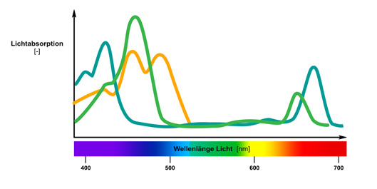 Lichtabsorption Diagramm