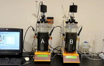 2018-Februar: Biologischer Abbau von organischen Abfällen und Analyse der Biogasproduktion im LAMBDA MINIFOR Laborfermenter