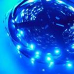 Licht für Photobioreaktoren